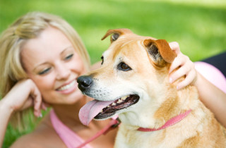 Beneficiile animalelor de companie asupra singuratatii si stresului